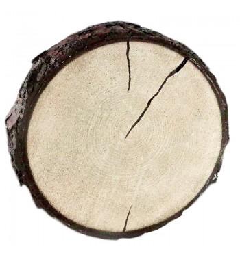 Small Tree Sliced Riser
