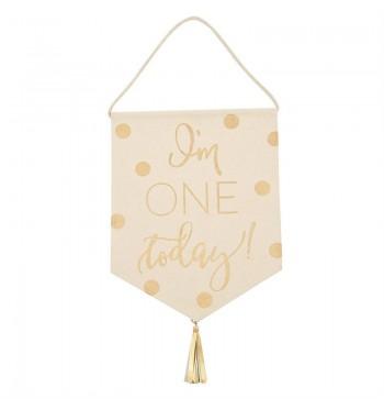 I'm One Today Birthday Banner