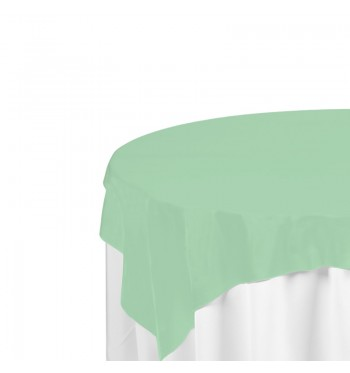 Mint Polyester Overlay